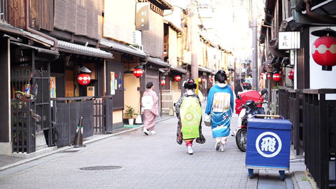 KYOTO, JAPAN - March 2015: Maiko, young training geisha walks on the streets of  Footage
