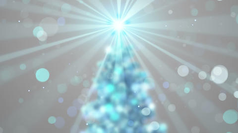 blurred christmas tree shine animation seamless loop 4k (4096x2304) Animation