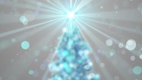 blurred christmas tree shine animation seamless loop 4k (4096x2304) Animation