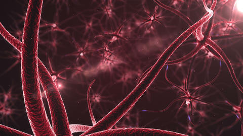 Red Neurons with electric impulses Animation