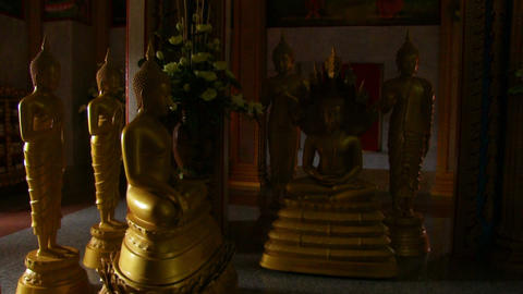 Buddha statues in the monastery Footage