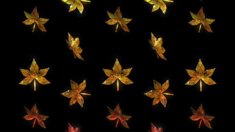 Autumn Falling Leaves, Changing Colour, 13 seconds Loop Footage