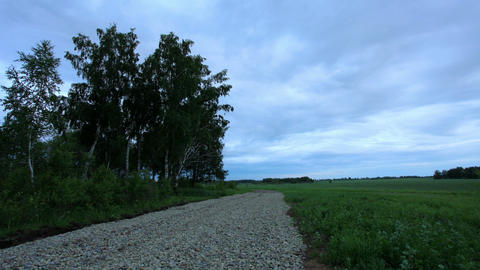 Sunset over a dirt road. Ishimsky district, Tyumen region, Russia, Full HD Live Action