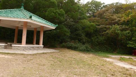 Modern Chinese pavilion on woodland glade, pan slide shot Footage