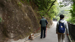 Old man with dog and boy walking on the pathway in rocky park Footage