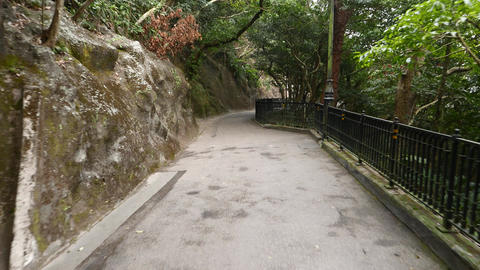 Empty footpath in forest. Rock wall on left, cliff overgrowth with bush on right Footage