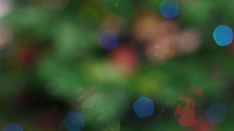 Colorful bokeh of Christmas lights tree. Static Footage