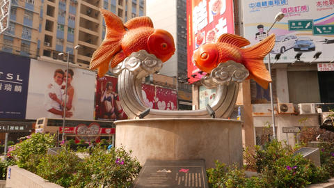 Two golden fish against sculpture composition pan around... Stock Video Footage
