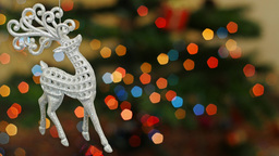 Christmas deer toy shakes at bokeh. Title area Footage