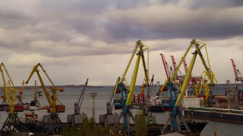 Sea Trading Port Activity Stock Video Footage