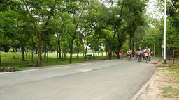 Many people ride bikes on park lane, recreation and sport activity Footage
