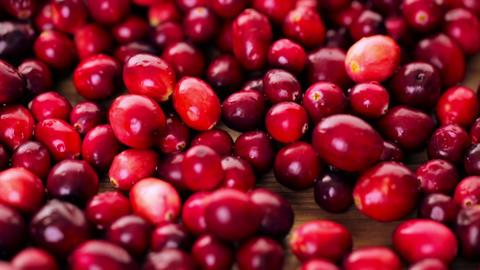 Cranberries Footage
