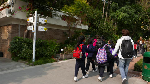 Teacher and four schoolgirls walking in the park Footage
