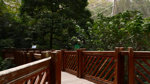 Walk platform and elevated gangway, wooden bridge observation deck Footage