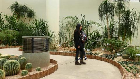 Two Girls Walk In Greenhouse, Desert Plants Exposition, Glide Shot stock footage
