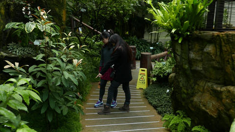 Two Asian girls walk look around in greenhouse, Forsgate Conservatory Footage