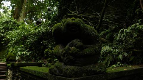 Dark mossy stone monkey sculpture in tropical forest, parallax shot Footage