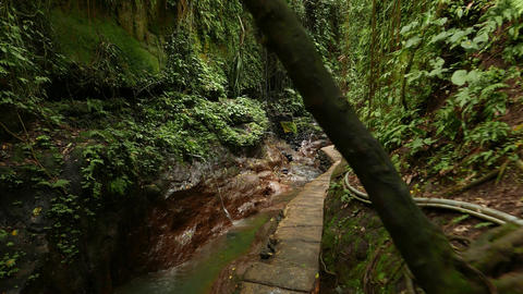 Walk along path at rocky gorge bottom, glide shot, tropical nature Footage