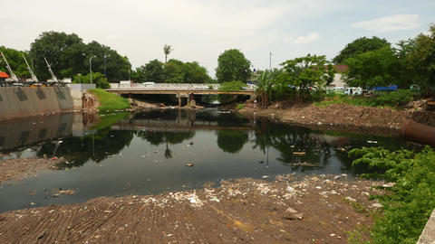 Kali Ciliwung estuary pond in front of Sunda Kelapa harbor, ecological issue Footage