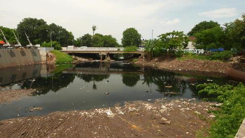 Kali Ciliwung estuary pond in front of Sunda Kelapa harbor, ecological issue Footage