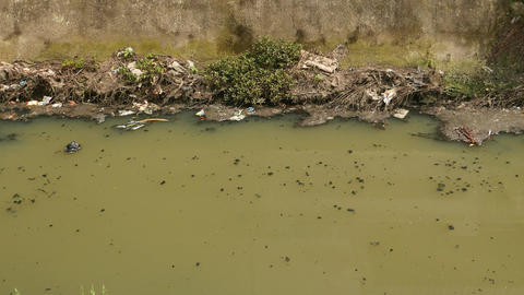 Muddy stream in dyke. crap floats, camera pan up to the building on bank Live Action