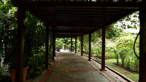 Move through wooden pergola walkway, shaded area in Hibiscus Garden Footage