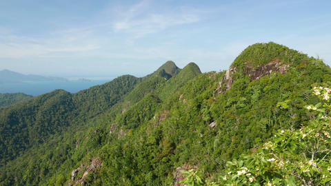 Mountain landscape panorama, blossom bush, skybridge observation platform Footage