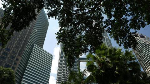 Menara Petronas, Twin Towers high angle view through tree leafage Footage