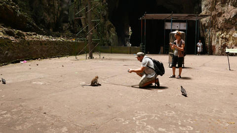 Approach Tourist Make Photo Of Monkey, Close Up, Huge Cave Chamber stock footage