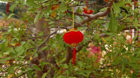 Miniature red chinese paper lantern on the tree, close up against green leaves Live Action