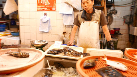 Cheerful seafood seller in market, close up view around fish shop stall Footage