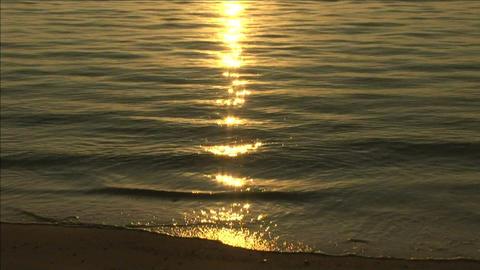 Sunlight shining on the sea Stock Video Footage