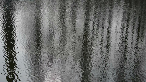Forest reflection in water,ripple,corrugated,wave,Sparkling Stock Video Footage
