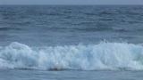 Wave Footage
