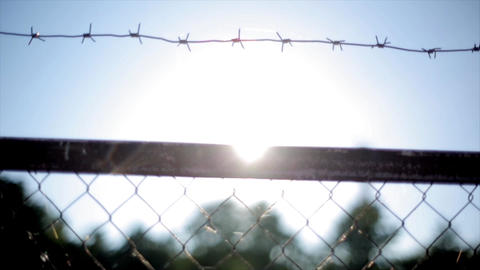 Barbed wire fence under sunshine. Summer day. Nobody. Jail. Sun beam Live Action