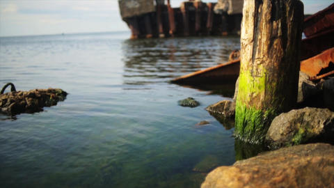 Flowered sea shore with big stones and iron details. Calm water surface. Nobody Footage
