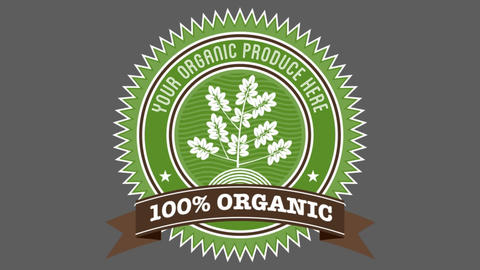 Organic Badge 1 After Effects Template