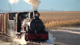 Steam freight train approaches camera Footage
