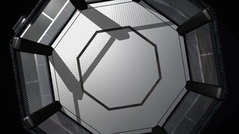 Octagon Shaped Fighting Ring from above Animation