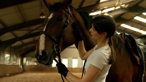 Smiling brunette stroking her horse Footage