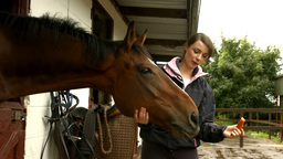 Pretty brunette with her horse eating carrot Footage