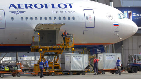 Unloading Plane from the Cargo and Luggage Footage