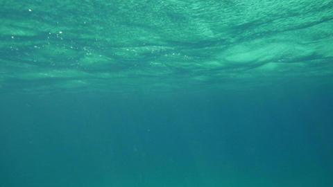 Wavy Sea Surface Underwater Footage