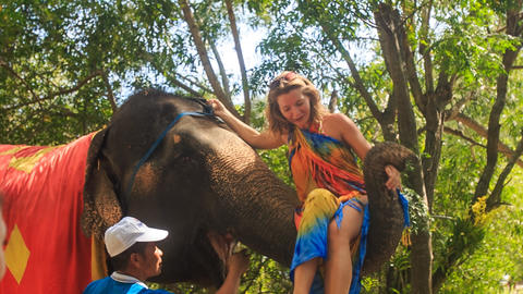 tourist takes seat onto elephant's trunk to ride in tropical park Footage
