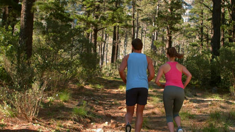 Back view of couple couple jogging Footage