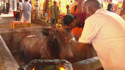 MUDARAI, INDIA – SEP 23, 2011: People Praying in Meenaksi Hindu Temple Footage