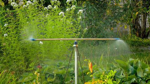 4K Sprinkler in Garden Footage