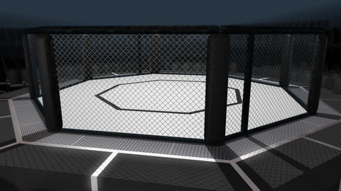 Octagon Arena Wide Animation