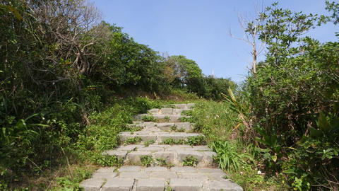 Climb up stony staircase, green bush around, windy cape mountain Footage