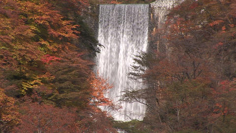 Waterfall and autumnal leaves Stock Video Footage